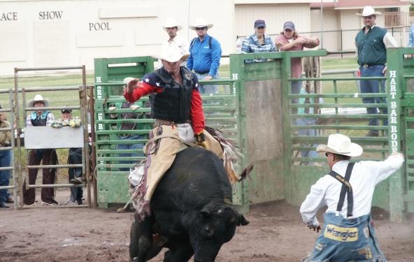 Sonny on the Black Bull